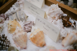 Weddings 10 Sea Shell Placecards