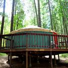 Hartstone Yurt