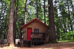 Madrone Cabin