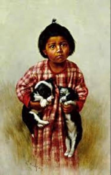 Pomo Indian McNab Shepherd