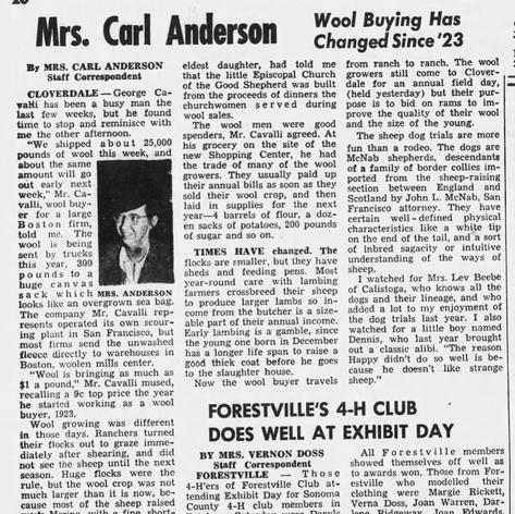 1951 PD Wool Growers