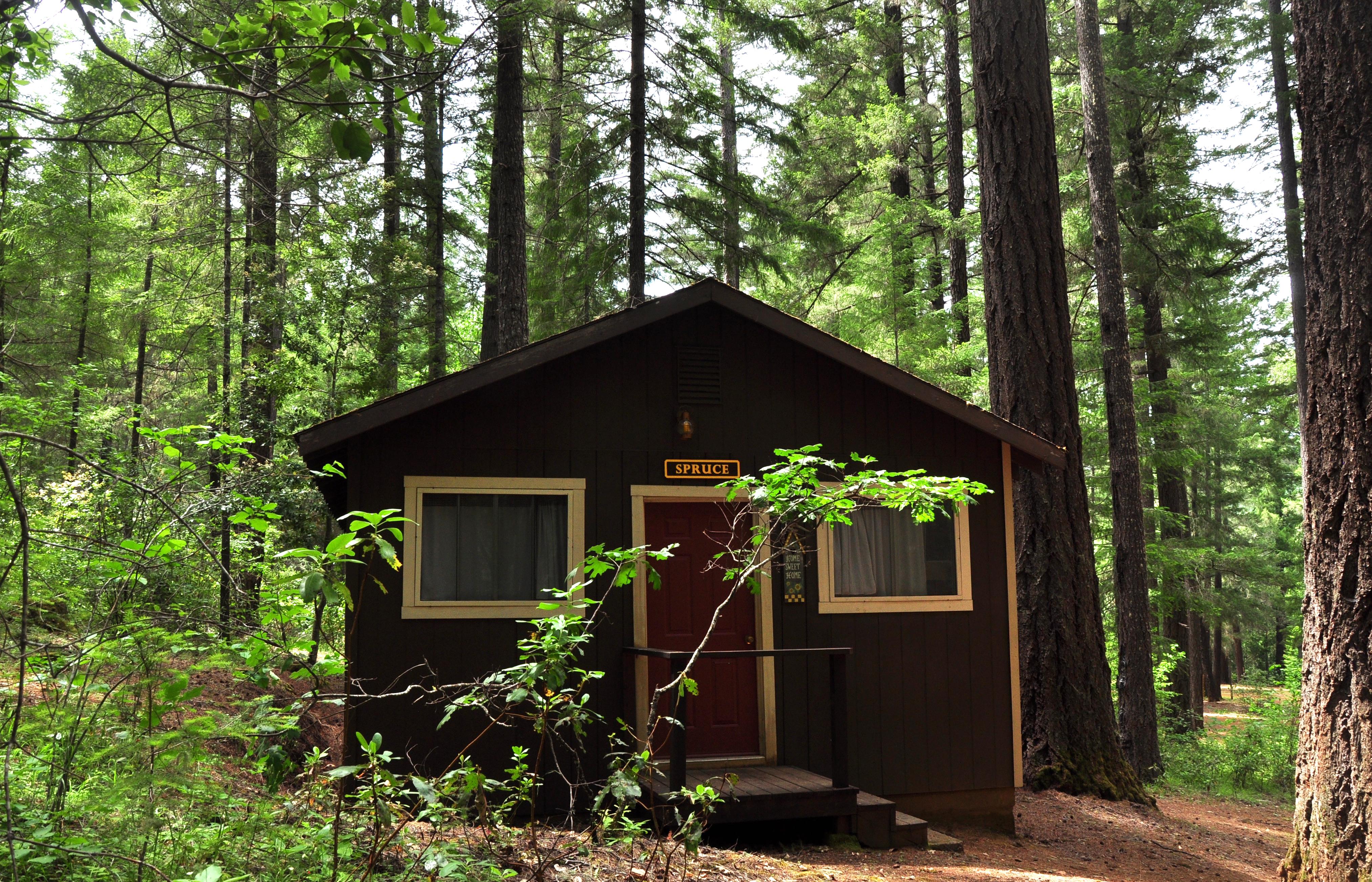 Spruce Cabin