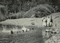 Eel River, Potter Valley