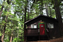 Willow Cabin