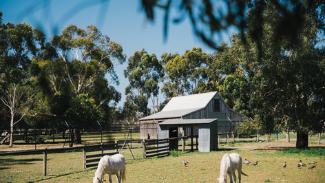 Bundoora Park Farm & Cafe