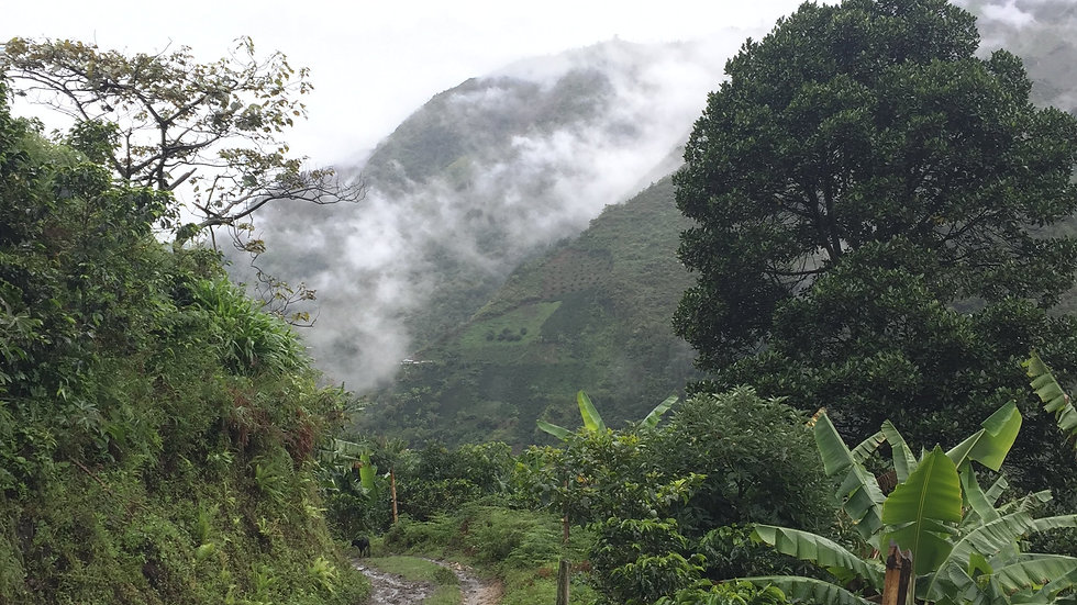 Colombia Inza