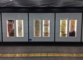 京の冬の旅〜京都駅八条口 コンコース