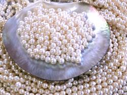 あこや真珠イメージ6