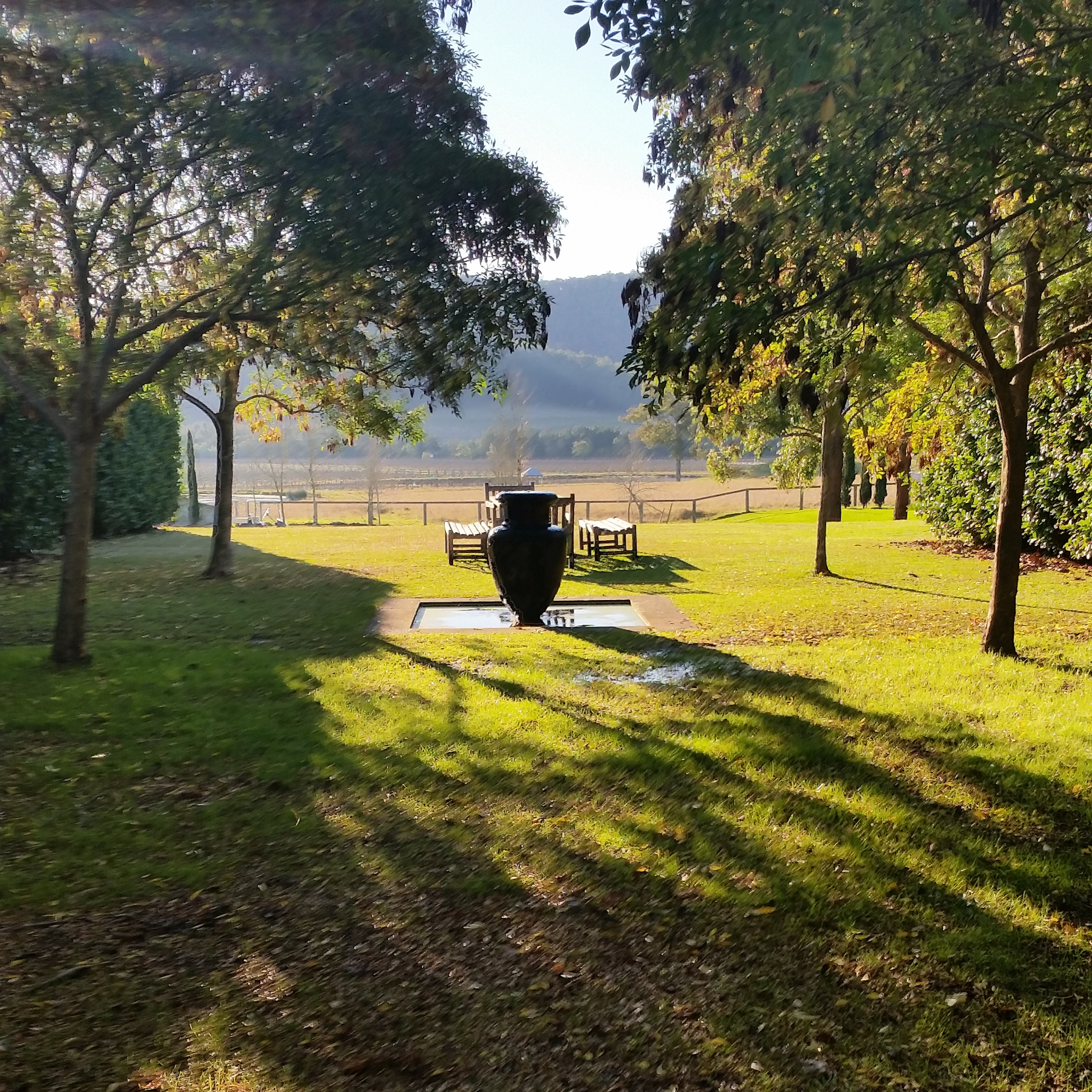 Wine Tours Hunter Valley
