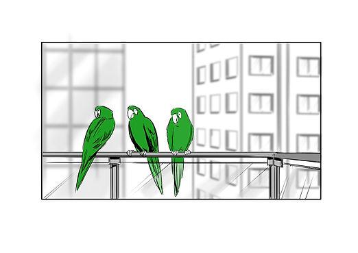 Copy of birds 4.jpg