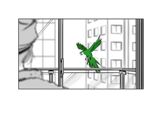 Copy of birds 2.jpg