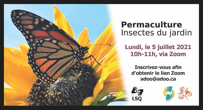 Conference sur insects 5 juillet 2021.jpg