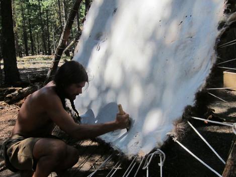 Dry scraping a buffalo hide