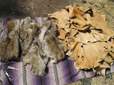 Coyote furs and deerskin buckskins