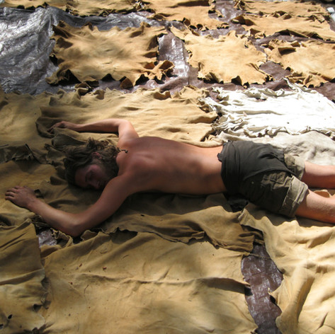 What might happen if you tan that many hides!