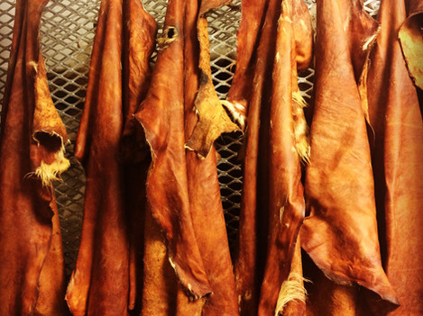 Willow bark tanned goat skins preparing for softening