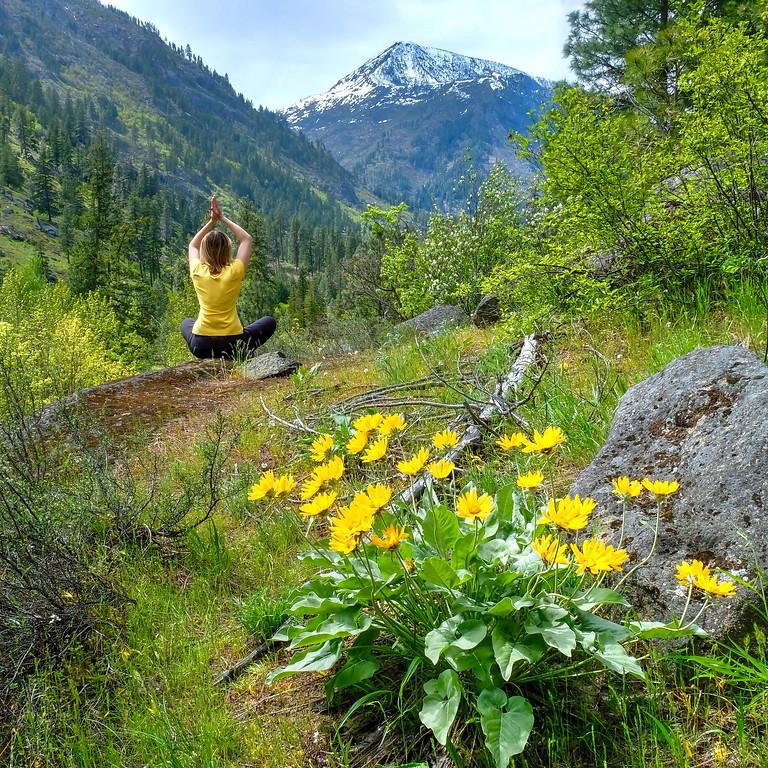 Risveglio di primavera nella Natura