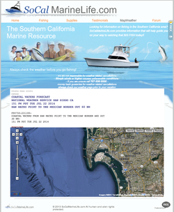 SoCal Marine Life