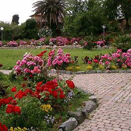 botanico3_cogoleto.jpg