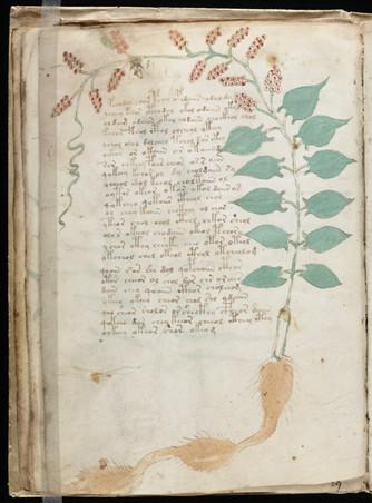 El códice Voynich. El libro más misterioso de la Historia