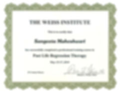 MSM_Past Life Regression Therapy Certifi
