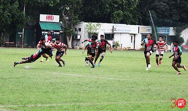 FH Sports Rugby.jpg
