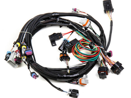 LS1/6 (24X/1X) ENGINE MAIN HARNESS