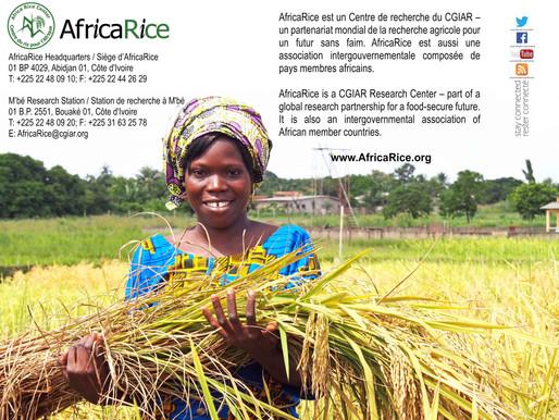 AfricaRice wins prestigious Al-Sumait Prize 2019