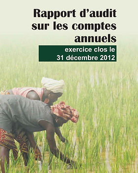 Audited Financial Statements 2012-fr.jpg