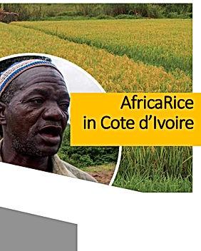 Brochures-AfricaRice in CI.jpg