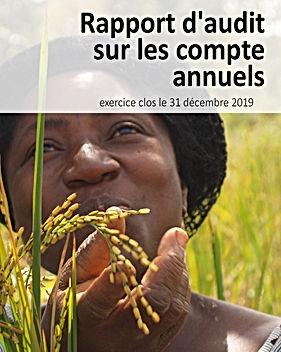 Audited Financial Statements 2019-fr.jpg