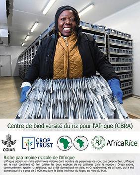 Centre_de_biodiversité_du_riz_pour_l'Af