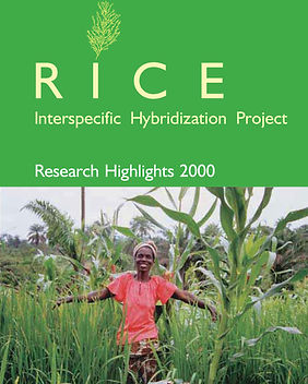 Rice Interspecific Hybridization Project