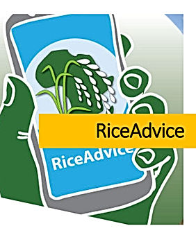 Brochures-RiceAdvice-new.jpg