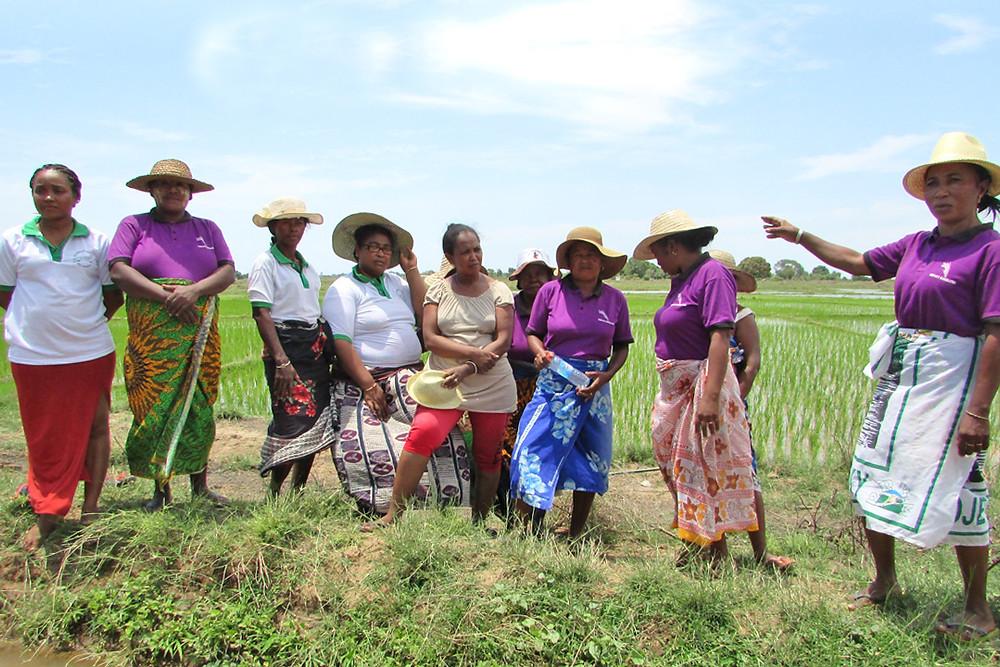 Members of Mirandava women's association, 2019