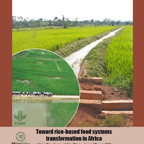 Launch of AfricaRice Annual Report 2019: Toward rice-based food systems transformation in Africa
