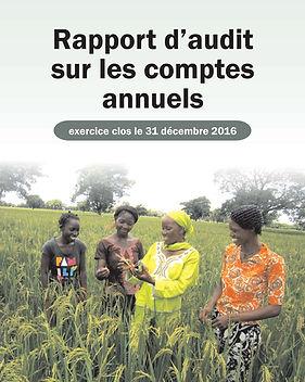 Audited Financial Statements 2016-fr.jpg