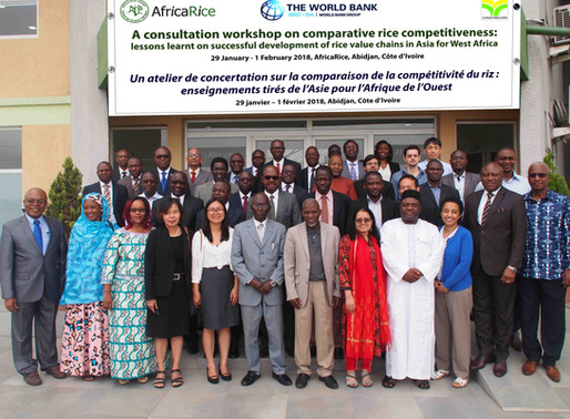 Asia shares key strategies for rice value chain success with West Africa