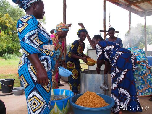 International Women's Day: Addressing gender gaps in Africa's rice sector