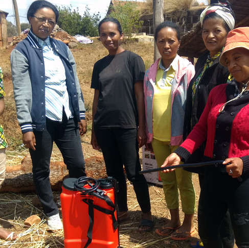 Malagasy women farmers continue to champion good agricultural practices