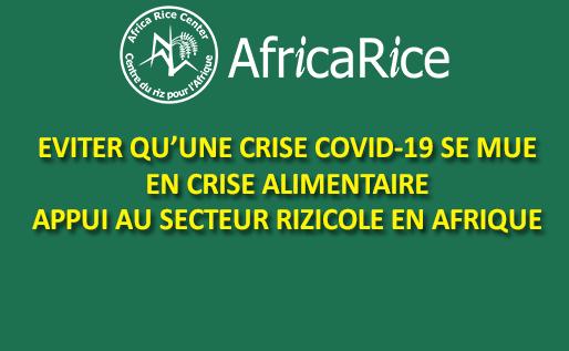 EVITER QU'UNE CRISE COVID-19 SE MUE EN CRISE ALIMENTAIRE: APPUI AU SECTEUR RIZICOLE EN AFRIQUE