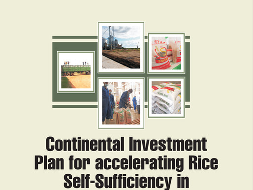 AfricaRice publication on 'Continental investment plan for accelerating rice self-sufficiency