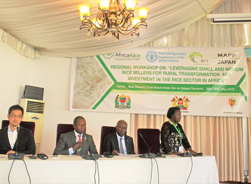 Representatives from nine African countries call for increased investment in rice milling