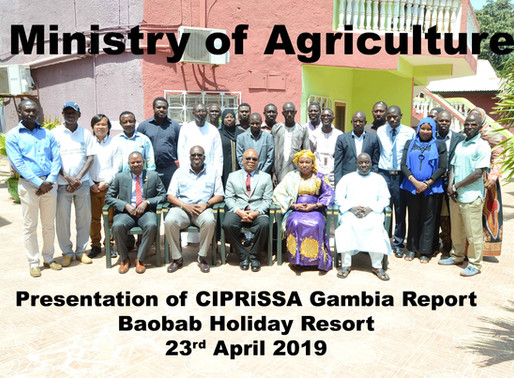 Launch of CIPRiSSA-Gambia report