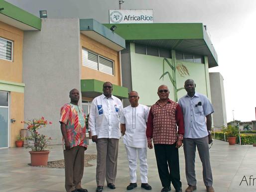 Visit to AfricaRice of Dr Chiji Ojukwu