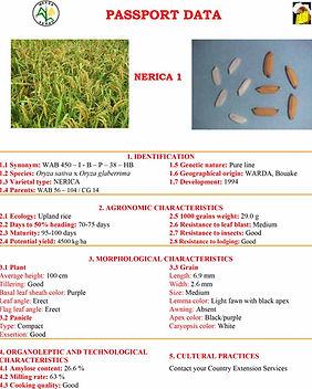 NERICA 1-8 Passport Data.jpg