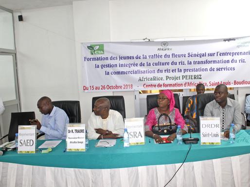 Building capacity of youth in rice entrepreneurship brings new hope to Senegal