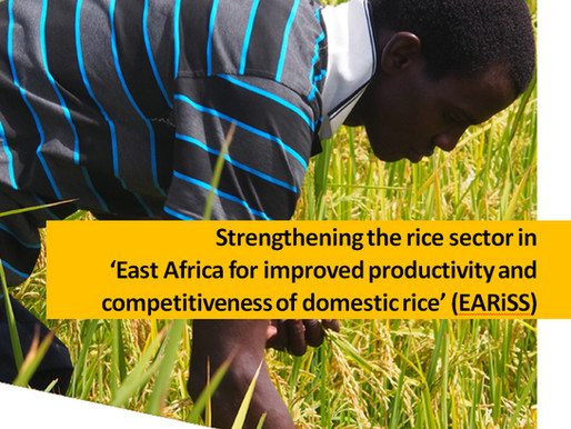 AfricaRice and Africa Harvest join forces with national partners to boost East Africa's rice...