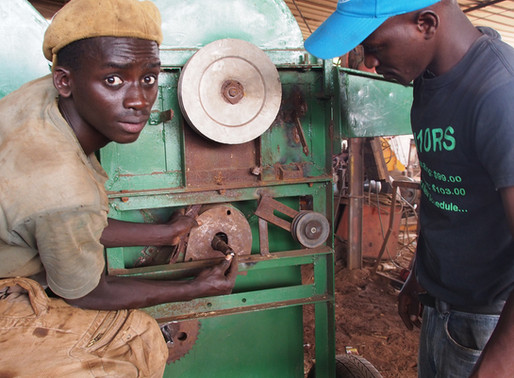 Innovations in rice value chains offer increased job opportunities  for rural youth