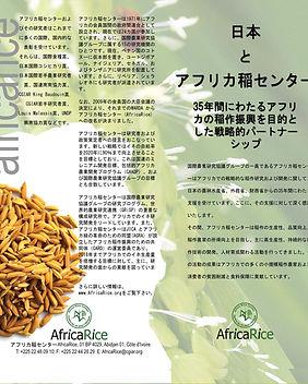 Japan_AfricaRice.jpg